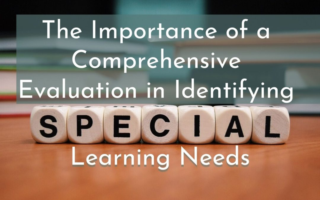 The Importance of a Comprehensive Evaluation in Identifying Special Learning Needs